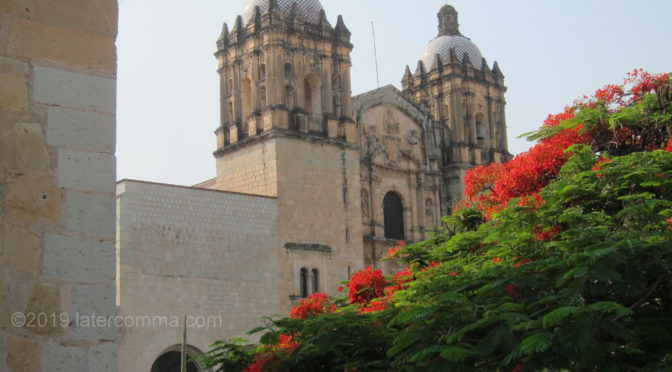 Retracing Our Steps in Oaxaca – Part 1